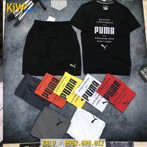 Mẫu Áo Thể Thao Nam Puma Original Sportwear 2019 Cực Chất